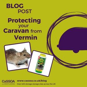 Caravan-Vermin-Protection