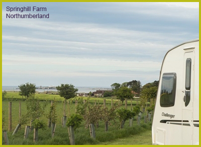 Springhill Farm Campsite - Northumberland Caravan Site