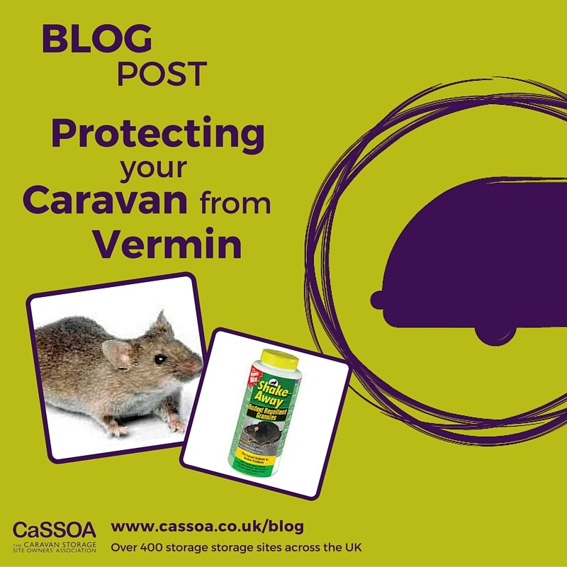 Protecting your caravan from Vermin
